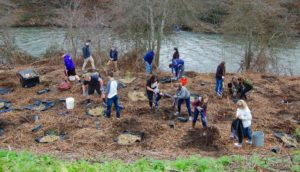 Cascade Christian High School students planting native shrubs and trees along Bear Creek next to their school.