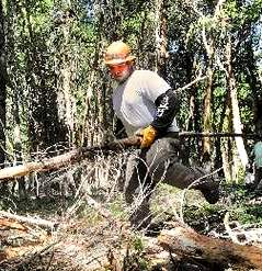 """Allen Esquada of Lomakatsi Restoration Project covers a skid line with limbs, brush and small timbers to renaturalize an area where dragged logs from the Ashland Watershed cut a path into the soil. 7/24/12 Denise Baratta"", Medford Mail Tribune"
