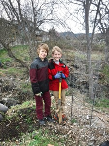 It takes two to plant a tree (at least)