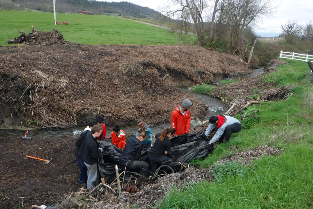 OSU Alternative Spring Break students came from Corvalis, volunteering half a day to help restore 300 feet of Anderson Creek in Talent.