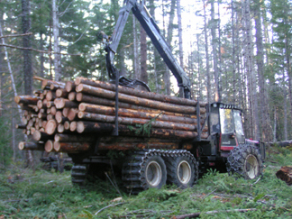 PICT3138, truck in forest, 4,5x3,4, 72, flipped