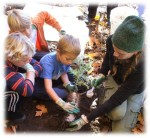 REEP, planting tree at Koa's, pptx photo 2