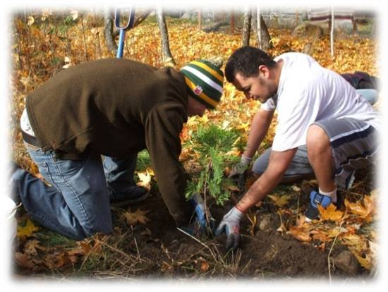 REEP, two men planting a tree, pptx photo 5