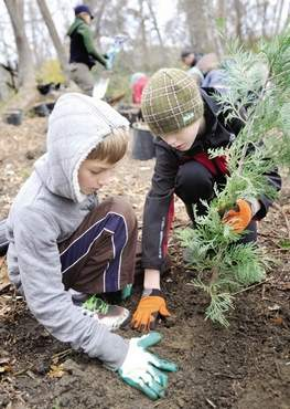 Streamside 2013, Jayden Grunde, left, and Ethan Gotfrid plant a tree, Julia Moore, Tidings, 11-14-13
