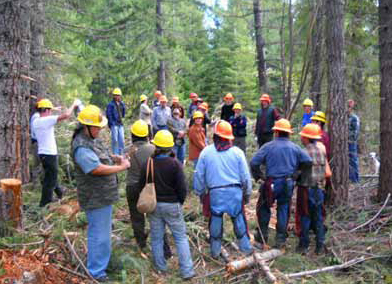 Workers and interns review and discuss ecological prescriptions for Hope Mountain Project